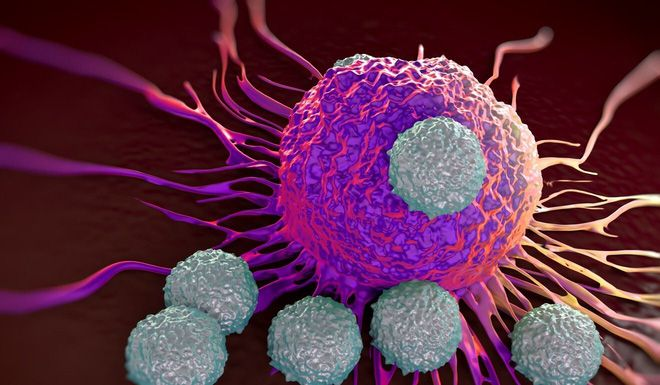 New strain of coronavirus can destroy immune cells